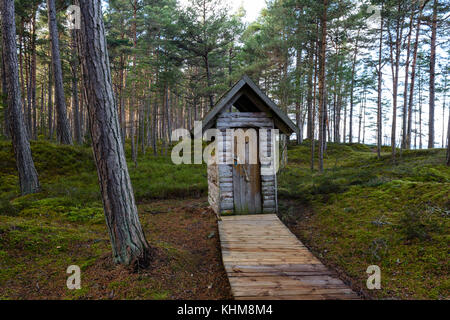 countryside scene in forest with old housing and boardwalk - Stock Photo