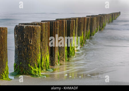 Groynes on the Baltic Coast, Mecklenburg-West Pomerania, Fishland-Darß-Zingst, Germany, Europe - Stock Photo