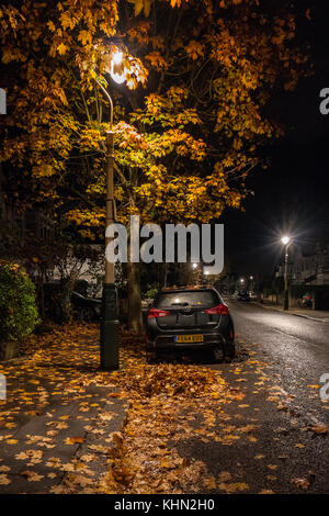 London, UK. 19th Nov, 2017. Autumn leaves and a parked car under street lights in the London suburb of Ealing. Photo - Stock Photo