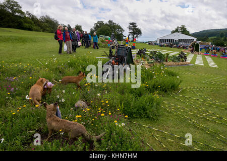 People stand & view theatrical, symbolic & surreal Pic 'n' Mix show garden at RHS Chatsworth Flower Show, Chatsworth - Stock Photo