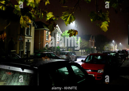 early morning rain on well off street, cars parked, trees, tree, leaves, detached, semi detached, houses, house, - Stock Photo