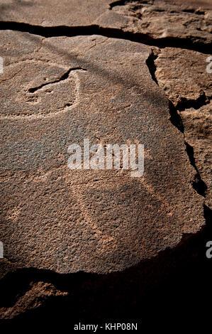 Damaraland, Namibie. Mars 2013. - Stock Photo