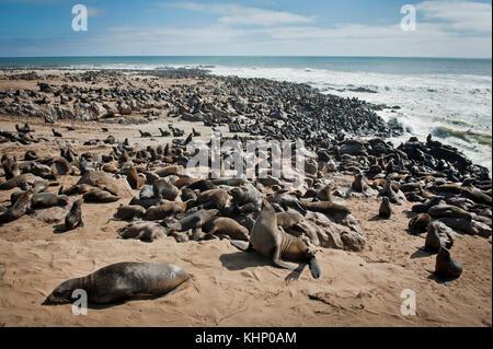 Cote des Squelettes, Namibie. Mars 2013. - Stock Photo