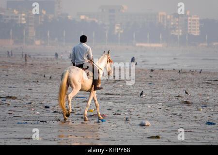 Man rides horse along polluted Juhu Beach, Mumbai - Stock Photo