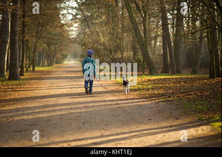 Boy 10-11 years walking the dog in autumn Park. He is holding the leash of a black-and-white cute dog. - Stock Photo