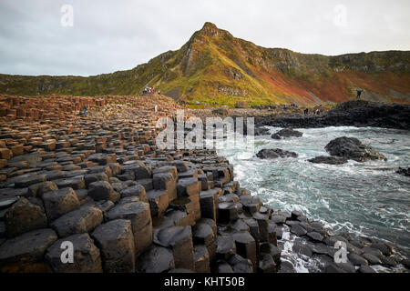 evening at the Giants Causeway county antrim northern ireland uk - Stock Photo