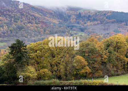 Autumn in the Dee Valley near Llangollen, North Wales, UK - Stock Photo