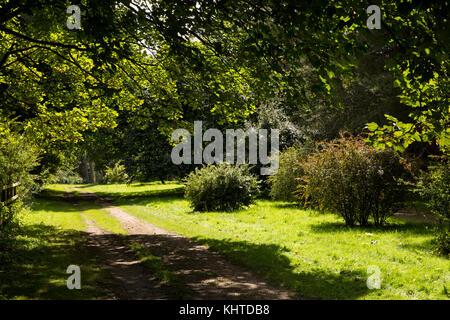 FRANCISCA: Norfolk arboretum