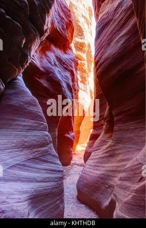 Narrow slot canyon Wire Pass leading into Buckskin Gulch, Paria Canyon-Vermilion Cliffs Wilderness,  near the Utah - Stock Photo