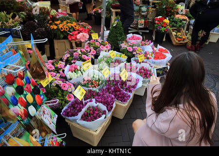 The world famous floating flower market on the Singel canal, in Amsterdam in the Netherlands - Stock Photo