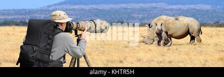 Professional wildlife photographer on safari. Rhino shot - Stock Photo