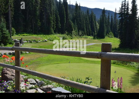Practice Green on the Sun Peaks Resort Golf Couse. - Stock Photo