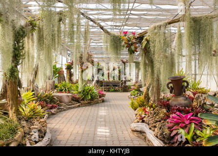 Greenhouse In Queen Sirikit Botanical Garden, Chiang Mai Province,  Thailand.   Stock Photo