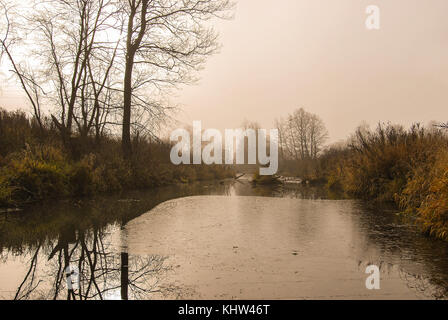 Landscape of late autumn, calm river covered with first ice, in the background trees in the fog - Stock Photo
