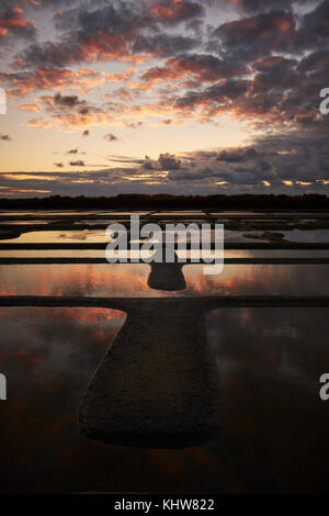 The working salt flats and marshes of Guerande near Le Croisic in the Loire - Atlantique region of Brittany France. Stock Photo