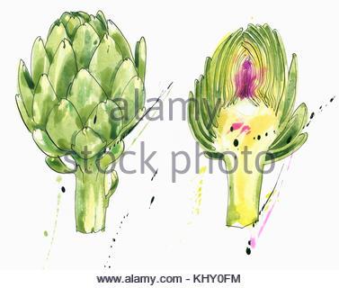 Whole and half artichokes - Stock Photo