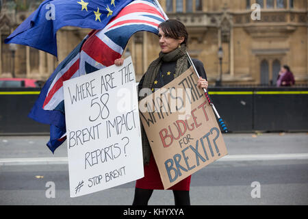 London, UK. 22nd November, 2017. Brexit Protesters outside Palace of Westminster whilst Philip Hammond Chancellor - Stock Photo