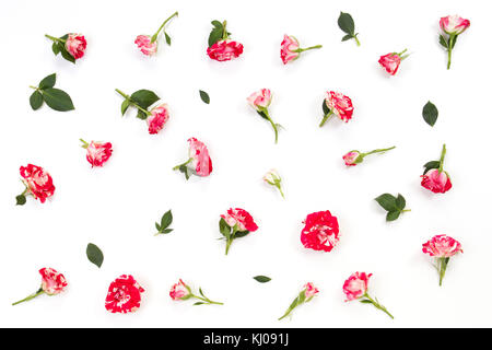 Floral pattern made of pink red roses and green leaves on white background. - Stock Photo