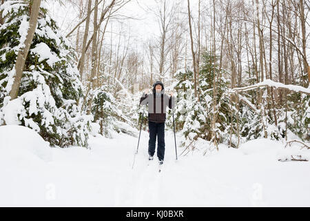 Cross-country skiing: man cross-country skiing in the forest in winter - Stock Photo