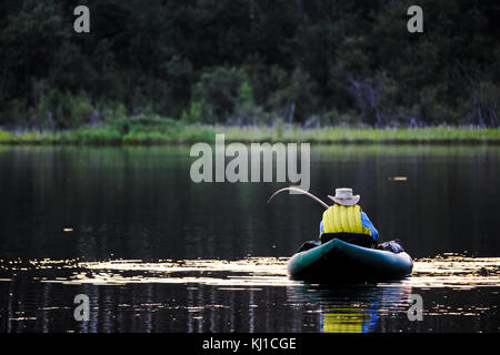 An unknown man on a float tube bringing in a trout. - Stock Photo