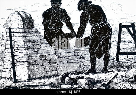 Engraving depicting the use of a plumb-bob to keep a dry stone wall vertical as it is built. Dated 19th Century - Stock Photo