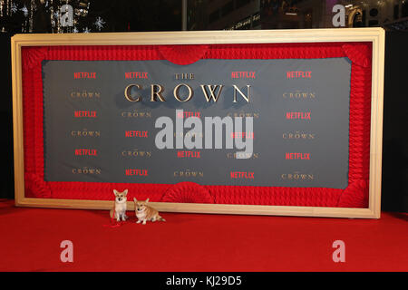 London, UK. 21st Nov, 2017. Corgis, The Crown - Season 2 World Premiere, Leicester Square, London, UK. 21st Nov, - Stock Photo