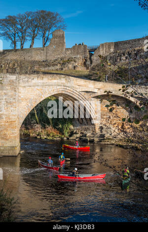 A group of people canoeing on the river Tees under County Bridge, Barnard Castle, UK, with part of the castle ruins - Stock Photo