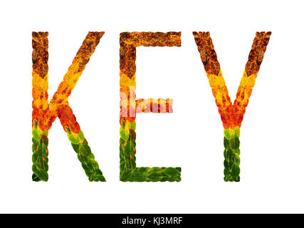 word key written with leaves white isolated background, banner for printing, creative illustration of colored leaves. - Stock Photo