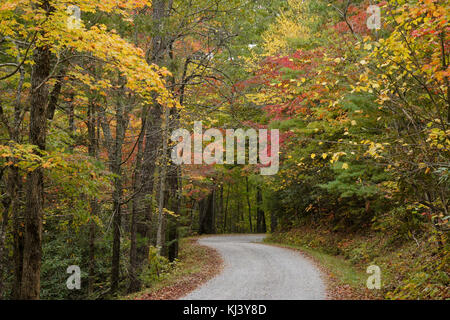 Autumn foliage along Rich Mountain Road out of Cades Cove, Great Smoky Mountains National Park, Tennessee - Stock Photo