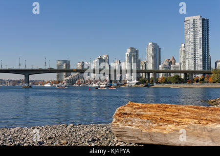 Dragon boats on False Creek with Cambie Street bridge in back, Vancouver, BC, Canada - Stock Photo