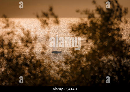 Sailboat in the sparkling sea framed by blurry olive branches. - Stock Photo