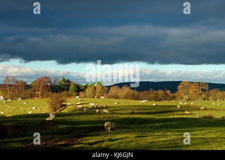Till Valley,Approaching Storm, Northumberland - Stock Photo