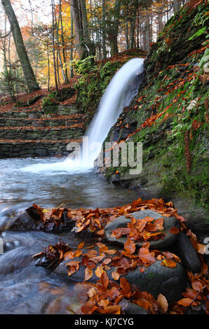 Waterfall in the autumn beech forest in the mountains. - Stock Photo