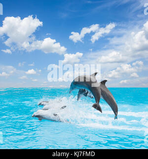 pack of jumping dolphins, beautiful seascape with deep ocean waters and cloudscape at bright day - Stock Photo