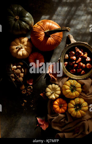 Pumpkin and nuts, fall image - Stock Photo