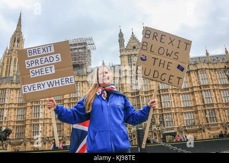 London, UK. 22nd Nov, 2017. A Pro Europe protester holds a placard on Budget day against the economic effect of - Stock Photo