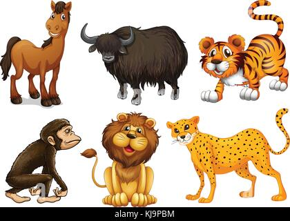 Illustration of the different kinds of four-legged animals on a white background - Stock Photo