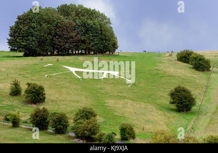 Hackpen Hill white horse and the Ridgeway. - Stock Photo