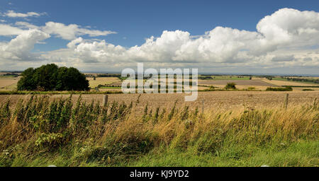 Panoramic view across Wiltshire from Hackpen hill, looking west. - Stock Photo