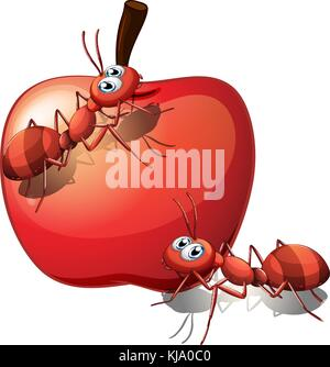Illustration of an apple with ants on a white background - Stock Photo