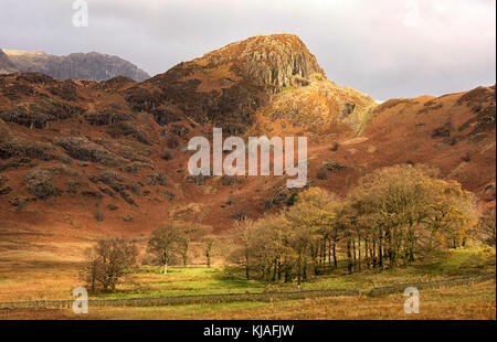 The Langdale Pikes at Blea Tarn in the Lake District, Cumbria England UK - Stock Photo
