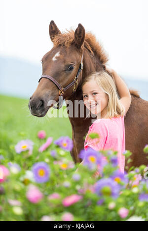 Freiberger Horse, Franches-Montagnes. Little girl standing next to chestnut foal in flowers. Switzerland - Stock Photo