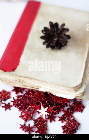 pine cones on book on white table. - Stock Photo