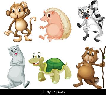 Illustration of the six different kinds of wild animals on a white background - Stock Photo