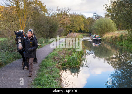 Horse drawn boat. Woman guiding a horse on a towpath while pulling a narrowboat on the Cromford Canal, Derbyshire, - Stock Photo