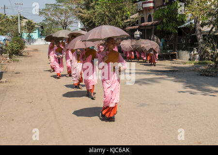 A big group of novice Burmese Buddhist nuns walk on a long line holding their brown umbrellas around the town of - Stock Photo