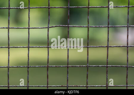 Close-up of metal fence. Rusty mesh. Old wire enclosure. Blurry greenery in background. Park or privacy garden. - Stock Photo
