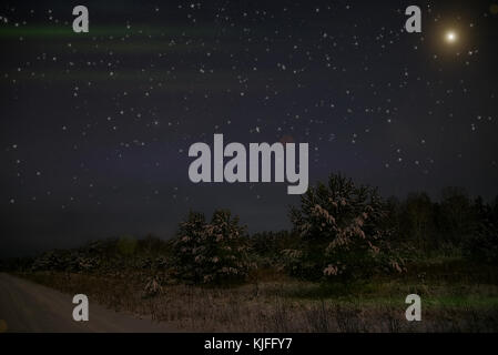 Night scene with snow-covered christmas trees in winter forest on the background of stars and sky - Stock Photo