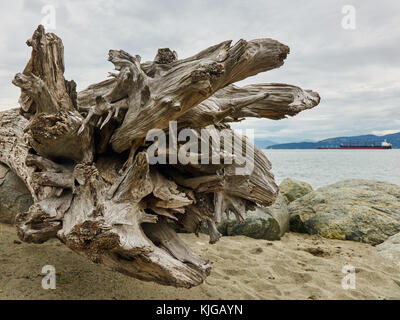 close-up of a large  piece of driftwood on a Vancouver beach, with clouded sky, water, freighter and mountain range - Stock Photo