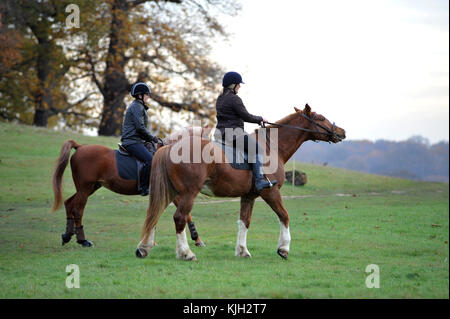 London, UK. 24th Nov, 2017. UK Weather. Horse riders on bright day in Richmond Park. Credit: JOHNNY ARMSTEAD/Alamy Live News Stock Photo